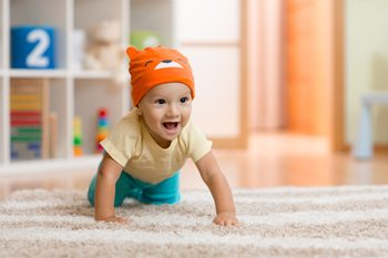 Ecological Carpet Cleaning